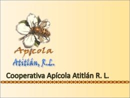 Presentación Cooperativa Apícola Atitlán R. L.