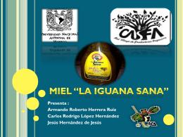 Miel la iguana sana - DiagnosticoMercados-2206-2012-2