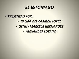 EL ESTÓMAGO - WordPress.com