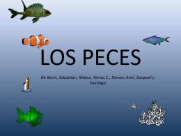 Peces - Campus Virtual ORT