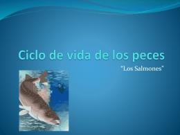 Ciclo de vida de los peces.
