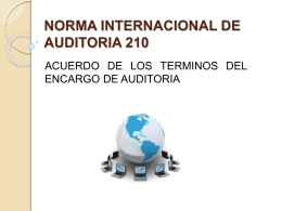 NORMA-INTERNACIONAL-DE-AUDITORIA-210