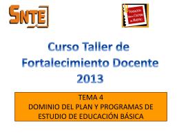 TEMA 4 DOMINIO DEL PLAN Y PROGRAMAS DE ESTUDIO DE