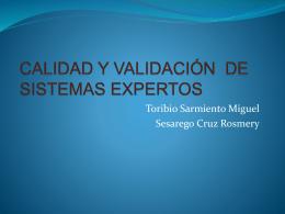 calidad y validación de sistemas expertos