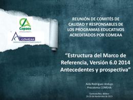 COMEAA ESTRUCTURA DEL MARCO DE REFERENCIA
