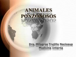 animales ponzoñosos expo