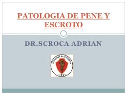 PATOLOGIA DE PENE Y ESCROTO