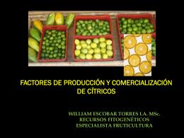 FACTORES DE PRODUCCIÓN Y