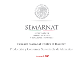 Producción y consumo sustentables, Semarnat