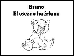 Bruno, el osezno huerfano