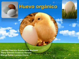 Huevo orgánico - Investigacion-2257-2012-2