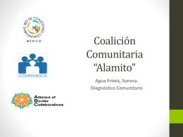 Presentación Diagnostico - Red de Coaliciones Comunitarias