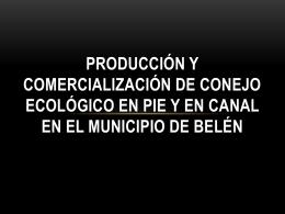 PRODUCCIÓN Y COMERCIALIZACIÓN DE CONEJO ECOLÓGICO
