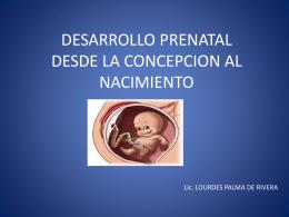 DESARROLLO PRENATAL DESDE LA CONCEPCION AL