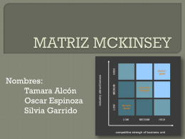 grupo 23 matriz mckinsey