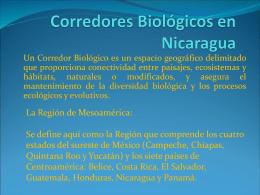 Corredores Biológicos en Nicaragua