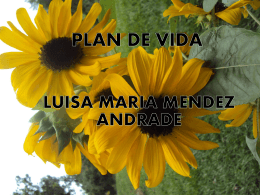 PLAN DE VIDA - WordPress.com