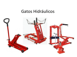Gatos Hidraulicos - Webquest Creator 2