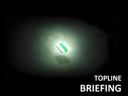 BRIEFING 2011 Topline