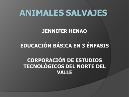 animales salvajes - tic-uso