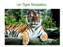 Un Tigre Vegetariano