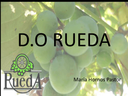 D.O RUEDA - WordPress.com