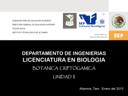 Descarga - instituto tecnologico de altamira