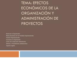 Tema: Efectos Económico de la Organización de Proyectos