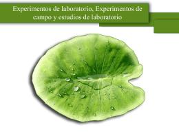 Experimentos de laboratorio (cap24.kerlinger)