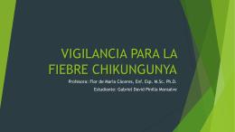 3-Vigilancia para la Fiebre Chikungunya
