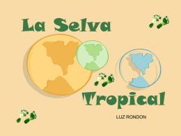 presentacion bioma de selva tropical.luz