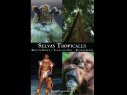 Slide 1 - Las Selvas Tropicales