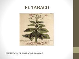 el tabaco - BLANCASTIVALIS
