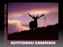 Actividades In - CABAÑEROS