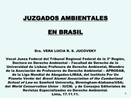 ACCESO A LA JUSTICIA AMBIENTAL EN BRASIL