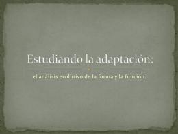 Estudiando la adaptación: