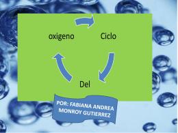 `ciclo del oxígeno`.