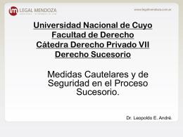 Universidad Nacional de Cuyo. Cátedra Derecho Privado VII