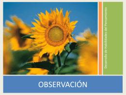 Observación concreta
