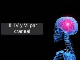 presentacion exploracion del III, IV y VI par craneal