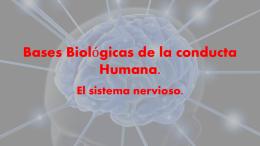 Bases Biológicas de la conducta Humana.