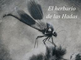 El herbario de las Hadas – PIA