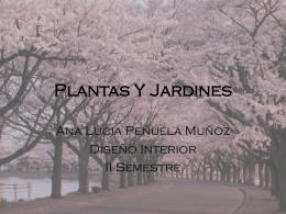 Plantas Y Jardines - colorespacio