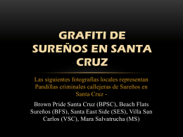 PowerPoint - Santa Cruz County BASTA