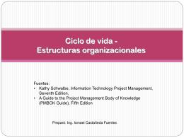 Ciclo de vida - Estructuras organizacionales