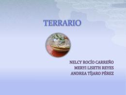 TERRRIO - Terrario