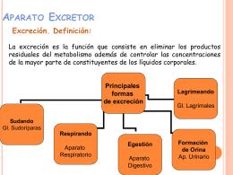 aparato-excretor 2012