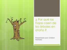 ¿ Por qué las hojas caen de los árboles ?