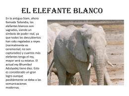 El elefante blanco