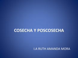 TALLER 3 MÓDULO I COSECHA Y POSCOSECHA